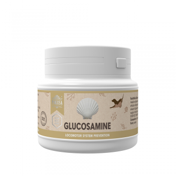 Glukozamine 100g ENG_small.png