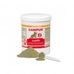 Canipur Cutfit - Nahale