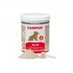 Canipur Fertil - tiinuse algus